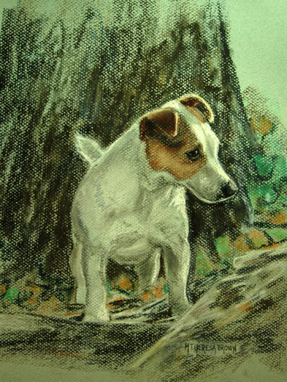 Pastel of Jack Russell