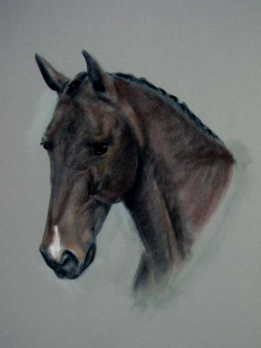 Pastel portait of horse